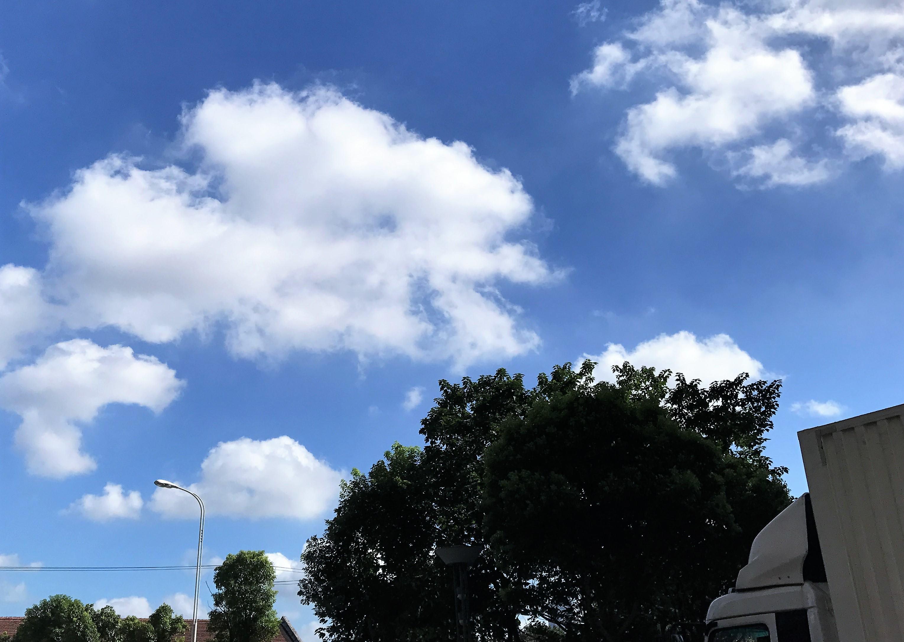 这两天天空蓝的让人以为在做梦